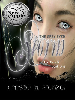 APPLE-AWARD-EBOOK-COVER-STORM