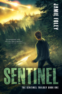 Sentinel-by-Jamie-Foley-quote