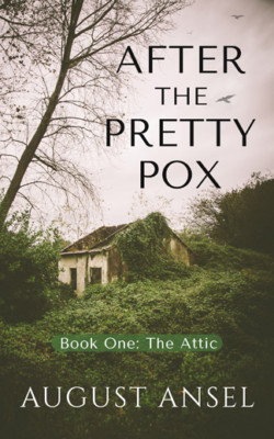 Ansel_AFTER-THE-PRETTY-POX_ebook-small
