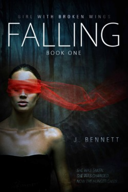 Falling_Ebook_New-Cover