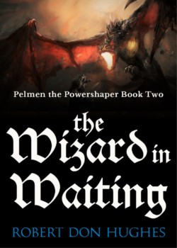 The-Wizard-in-Waiting