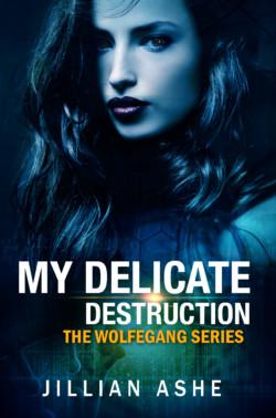 WG-1-My-Delicate-Destruction